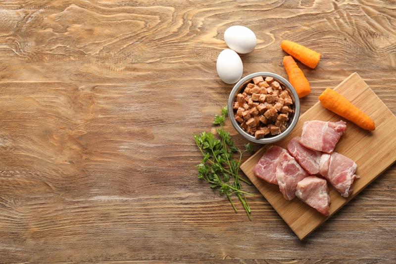 ドックフードで補えない栄養素はどうすればいいの?