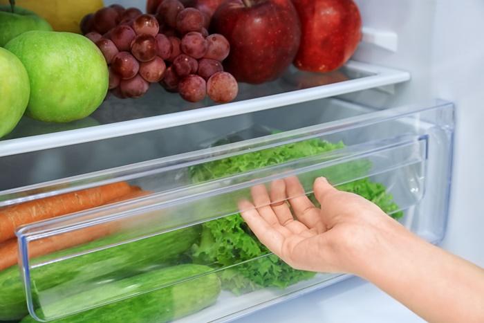 モグワンの賞味期限の為に冷蔵庫はNG!